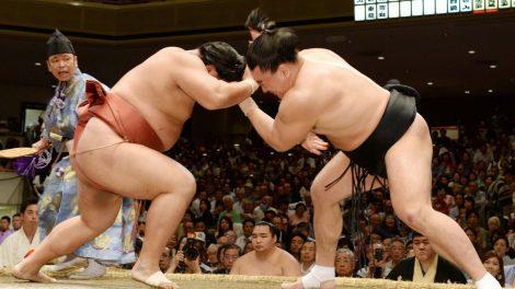 Nhật Bản sumo 20720a |TOPMOST.VN